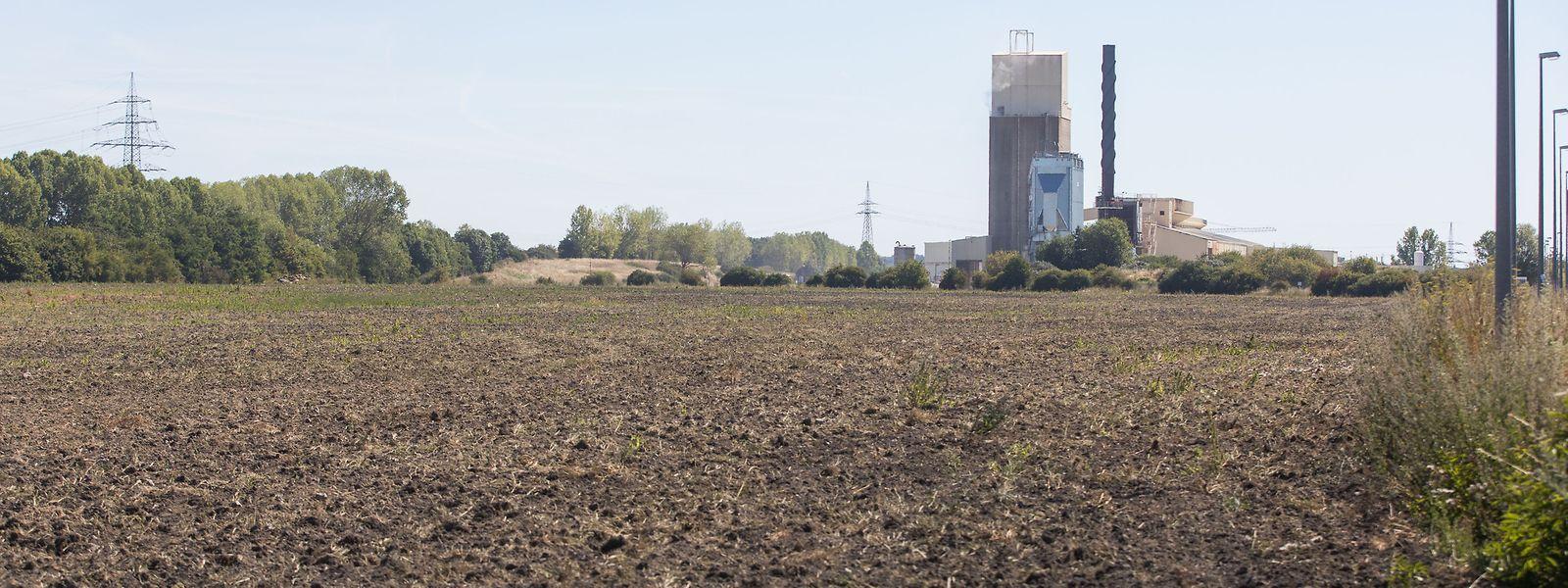 Après quatre années de discussions et d'atermoiements, la société Fage a renoncé à s'installer à proximité de Bettembourg. Les 15 hectares seront rachetés par le ministère de  l'Economie.