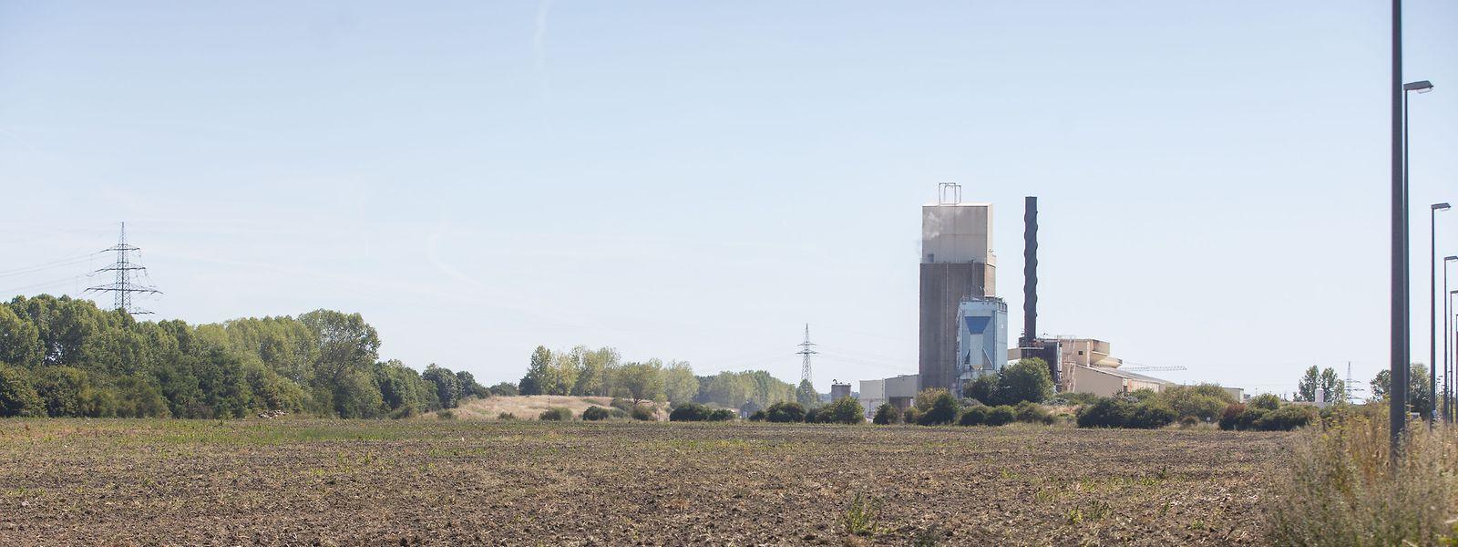 Die geplante Ansiedlung einer Fabrik des griechischen Joghurtherstellers Fage in Bettemburg steht unter keinem guten Stern. Jetzt werden Steuervorwürfe laut.