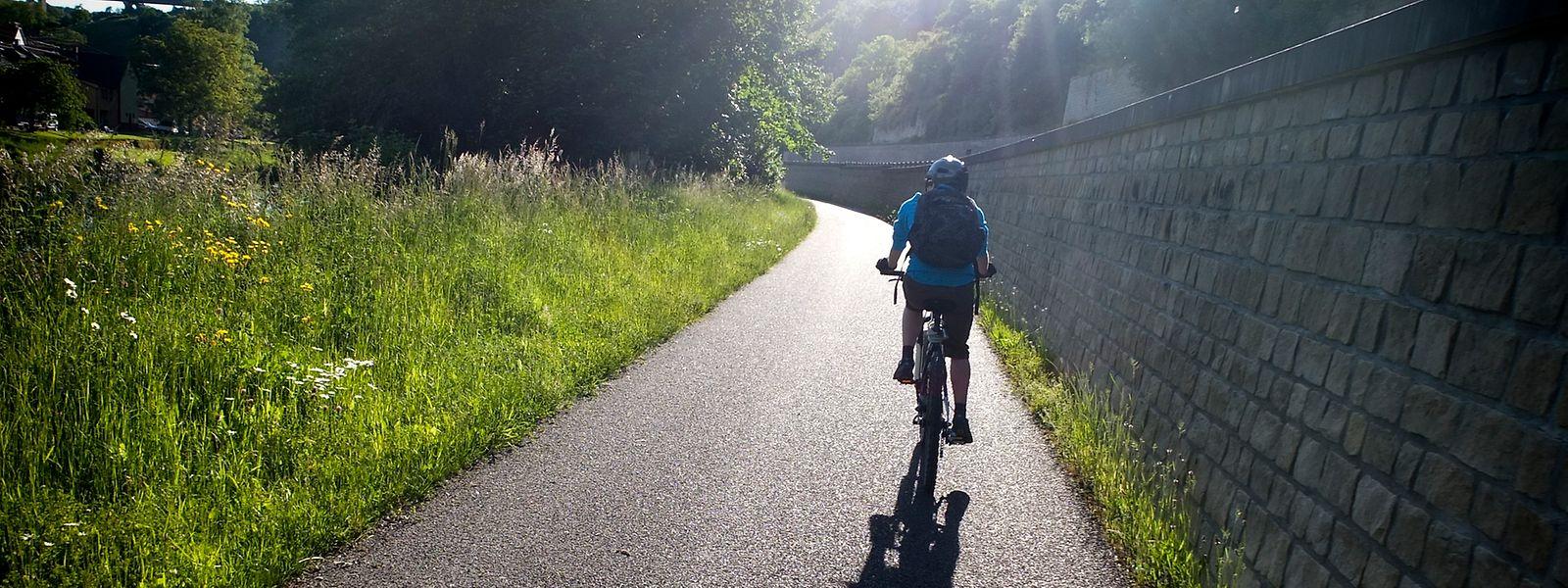 Bei gutem Wetter bietet sich ein Ausflug mit dem Fahrrad an.