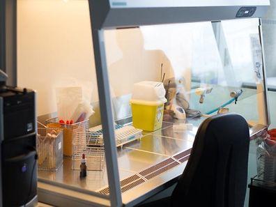 """""""In Luxemburg kann es schon mal drei oder vier Wochen dauern, bis das nationale Gesundheitslaboratorium zu Ergebnissen kommt und uns sagt, mit welchem Krebs wir es zu tun haben."""""""