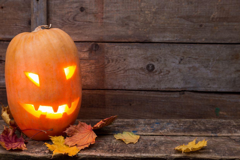 Helloween, Kürbis, Pumpkin (Foto: Shutterstock)