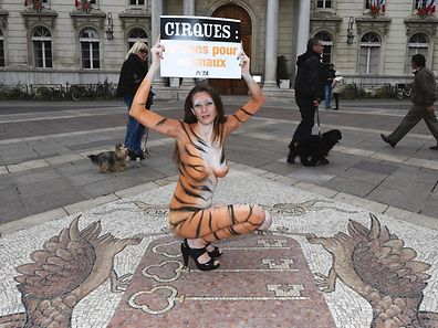 """Brazilian model Juliana Marques, body painted in the colours of a tiger, holds up a placard that reads """"Circus, prison for animals-  People for the Ethical Treatment of Animals (PETA)"""" as she protests for the welfare of circus animals outside the Town Hall in Avignon, southern France on February 11, 2017. / AFP PHOTO / BORIS HORVAT"""