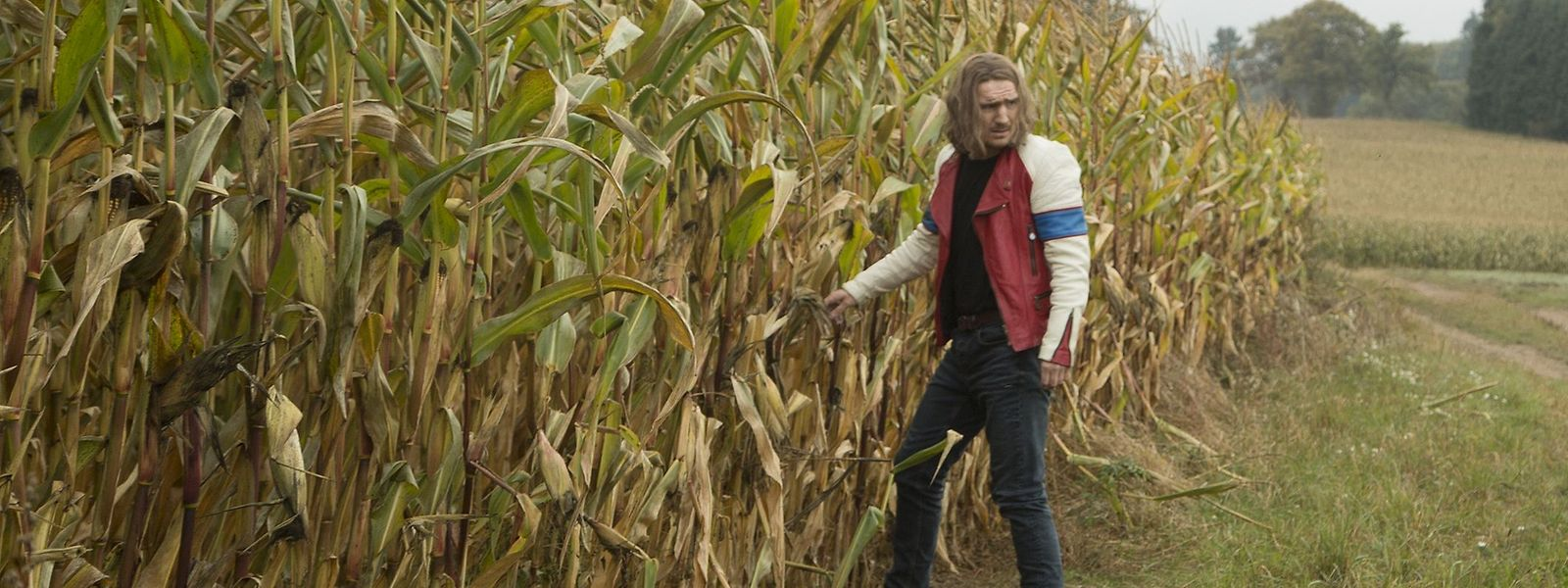 Vou fugir para este campo de milho que estes luxemburgueses estão loucos!