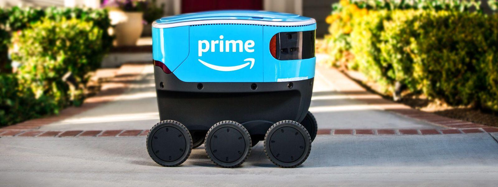 Die Roboter erinnern an Kühlboxen auf Rädern.