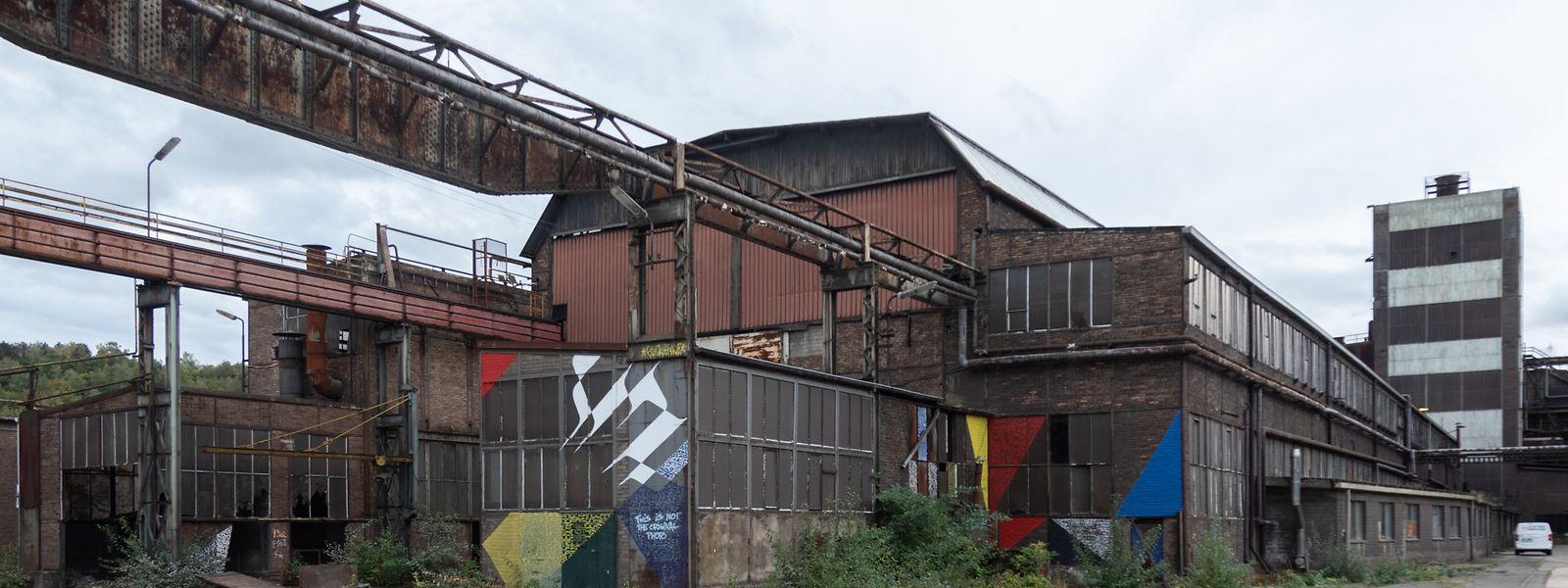 2022 könnte sich das Ferro Forum in der Zentralwerkstatt des ehemaligen Stahlwerks zwischen Esch/Alzette und Schifflingen niederlassen.