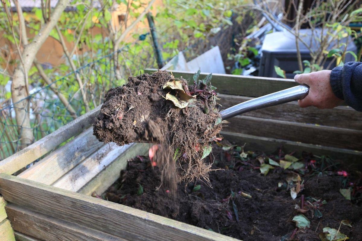 Nach einemJahr lässt sich der Kompost schon zum Mulchen im Ziergarten verwenden. Oder der Hobbygärtner setzt ihn um und lässt ihn weiter verrotten.
