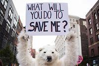 Konkreter Klimaschutz: Bis Jahresende soll ein nationaler Aktionsplan vorliegen.