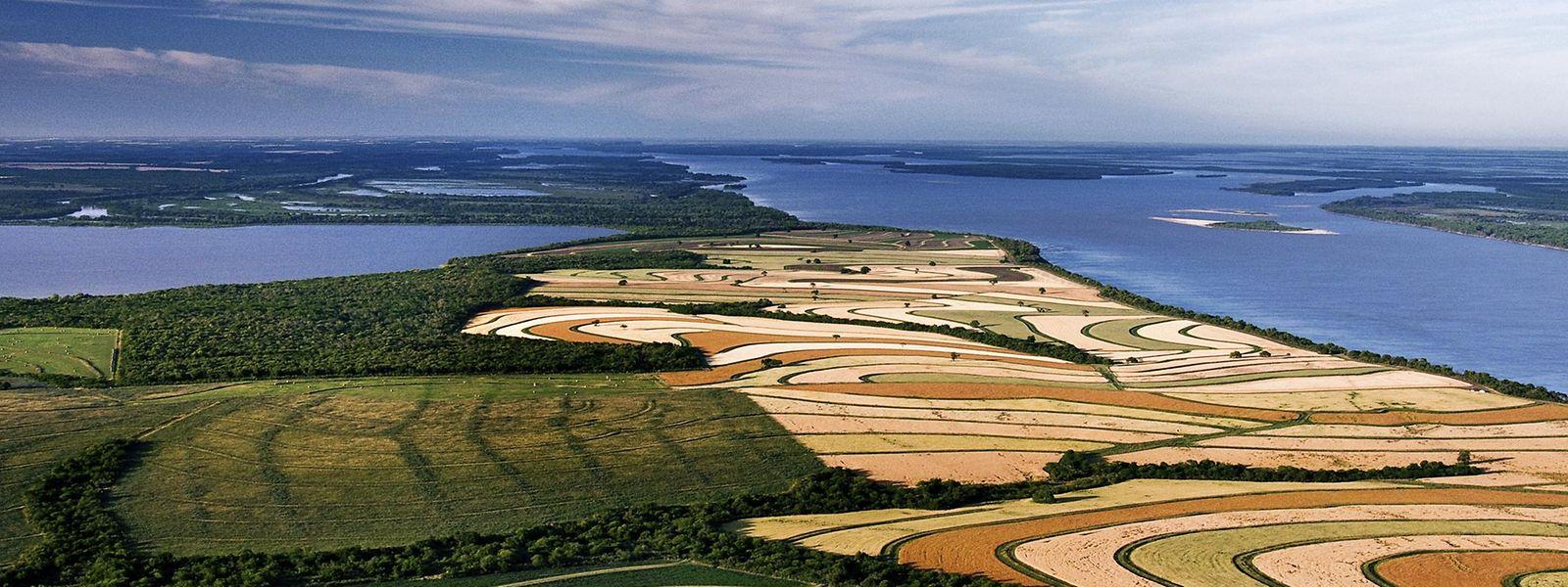 """Der """"Campo Laguna Blanca"""" in Argentinien gilt als Pardebeispiel für einen Biolandbau mit modernster Technik."""