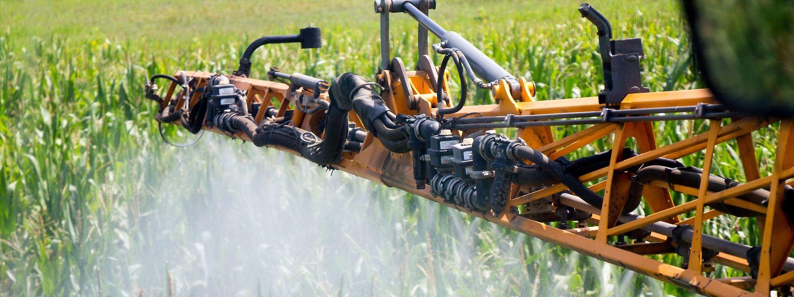 Plus de la moitié des exploitations agricoles luxembourgeoises ont abandonné l'utilisation du glyphosate.