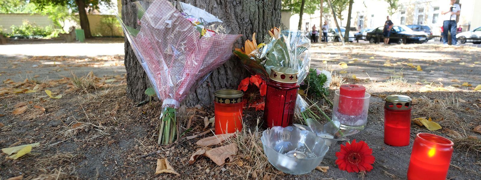 Blumen und Kerzen stehen an einem Baum auf einem Spielplatz. Bei einem Streit zwischen zwei Männergruppen in Köthen ist ein 22-Jähriger ums Leben gekommen.