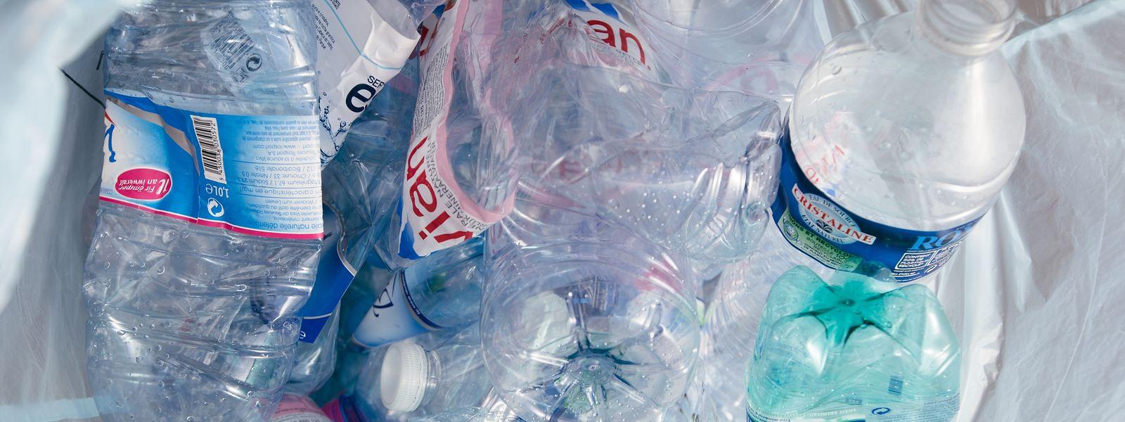 Dem Thema des zunehmenden Plastikmülls wird immer mehr Aufmerksamkeit geschenkt.