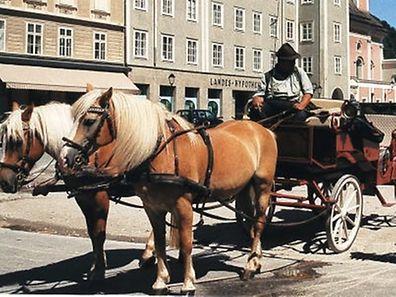 Nicht nur in Rom sind die Kutschen bei Touristen durchaus beliebt.