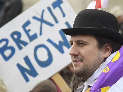 Demonstrators supporting Brexit protest outside of the Houses of Parliament in London, Britain, November 23, 2016. REUTERS/Toby Melville