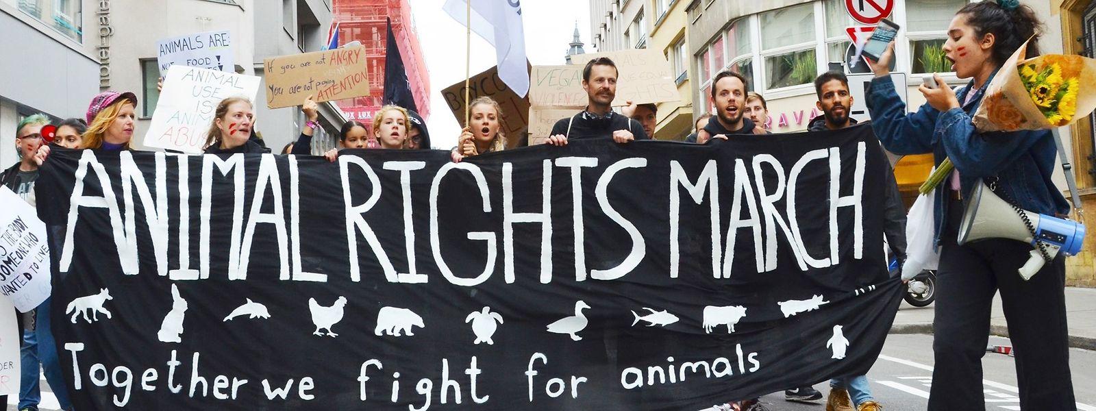 Plus de 60.000 animaux ont été abattus entre avril et juin 2018 au Grand-Duché. L'année suivante, le Ministère de l'Agriculture, en dénombre plus de 61.000.