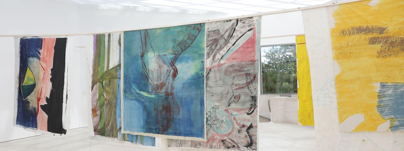 Une vingtaine de toiles sans cadre de Vivian Suter sont accrochées dans l'espace du Pavillon du Mudam.