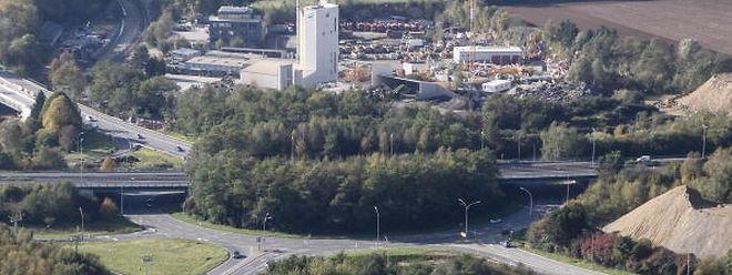 In der ersten Phase werden die Hecken und Bäume rund um den Kreisel entfernt.