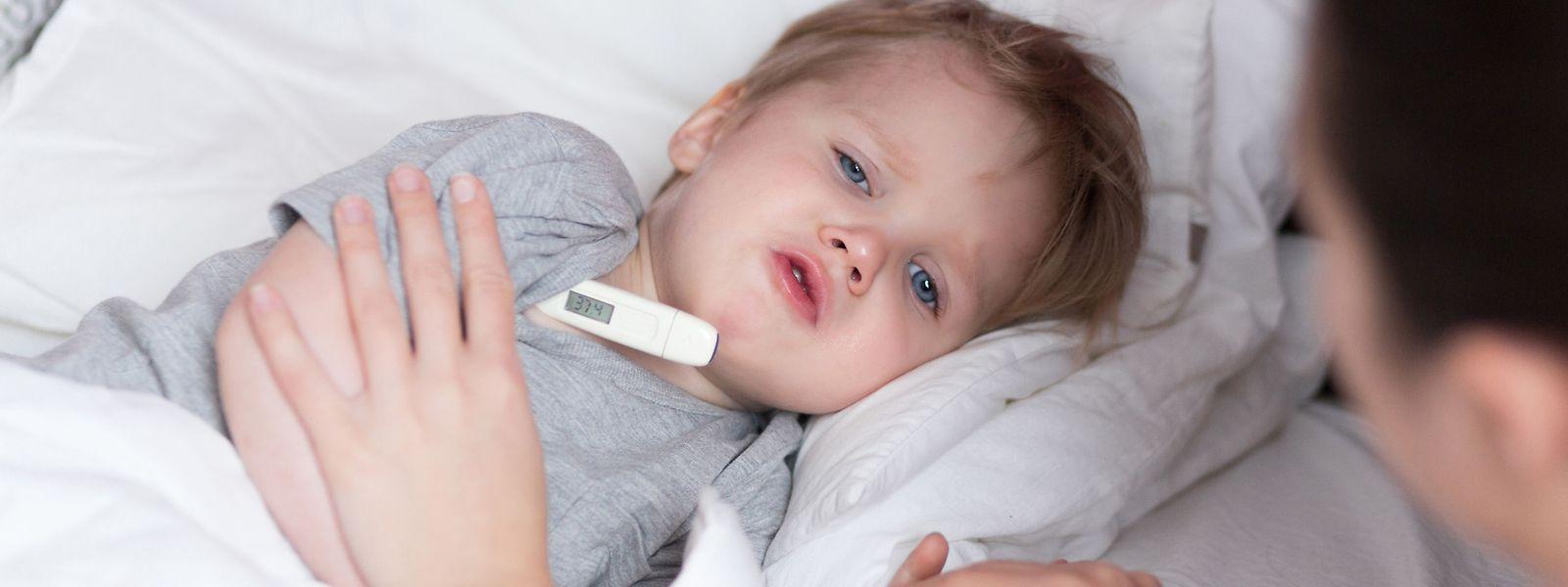 Insbesondere zur Grippezeit ist der Service Krank Kanner Doheem gefragt: 2017 wurden die meisten Betreuungen in den Wintermonaten Januar und November übernommen.