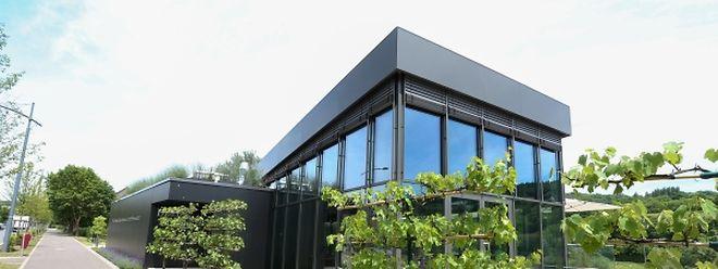 Das moderne transparente Gebäude soll ein Touristenmagnet schlechthin im Miselerland werden.