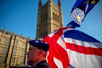 "An anti-Brexit protester wearing a European Union flag cap, flies European and Union flags outside the Houses of Parliament in London on February 21, 2019. - Britain's finance minister Philip Hammond said Thursday there had been ""some movement"" by the European Union that could lead to a breakthrough in Brexit talks in ""the next few days"". (Photo by Tolga AKMEN / AFP)"