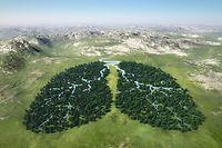 Klima Umwelt Umweltschutz Gesund CO2 Climat Environnement