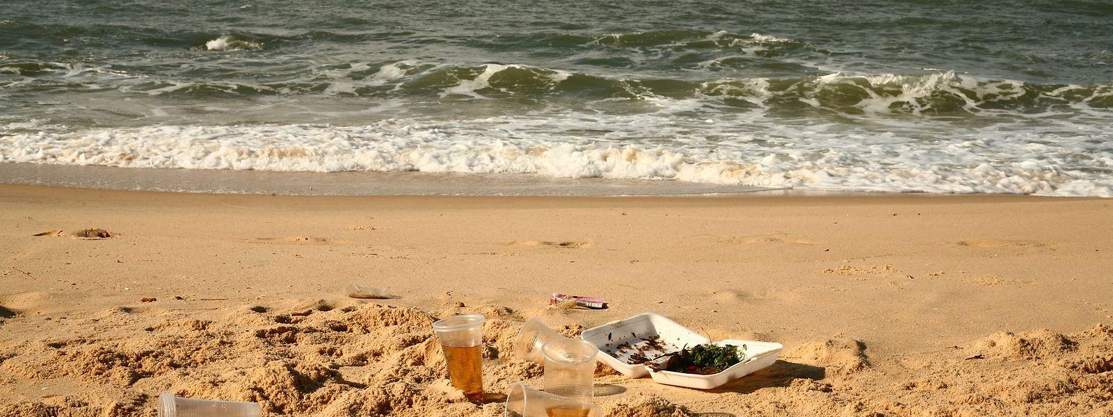 Chemikalien, Müll und Mikroplastik belasten die marinen Ökosysteme.