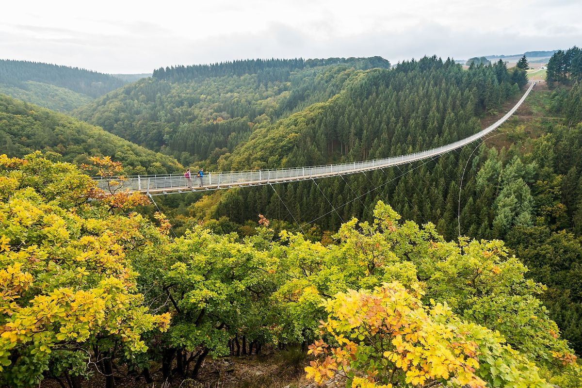 Built in 2015, the 'Geierlay' bridge is 360m long and 100m above ground