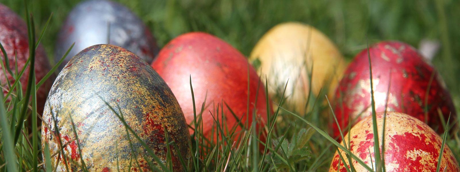 Wer Eier zu Ostern färben will, muss dafür nicht auf synthetische Farben zurückgreifen - im Garten lassen sich Alternativen finden.