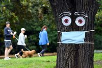TOPSHOT - People walk past a mask and eyes stapled to a tree in Melbourne on April 20, 2020, as the southern Australian state of Victoria recorded just one new case of coranavirus overnight. - Vicotria has recorded 1,329 confirmed cases with 15 deaths. (Photo by William WEST / AFP)