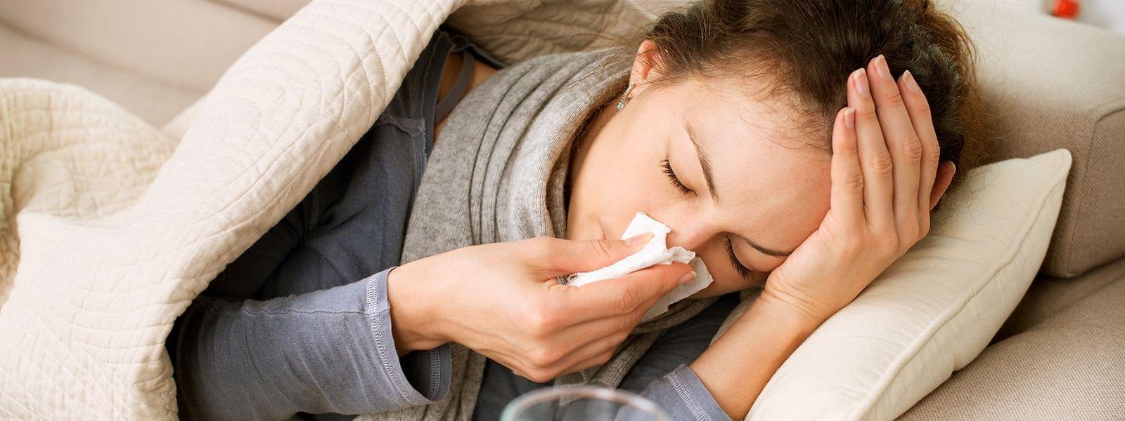Eine echte Grippe wird durch Viren ausgelöst und beginnt meist plötzlich.