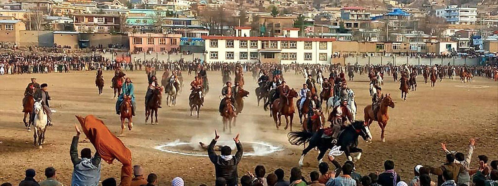 Mehrere Pferde bei einem Buskaschi-Wettkampf in Afghanistan.