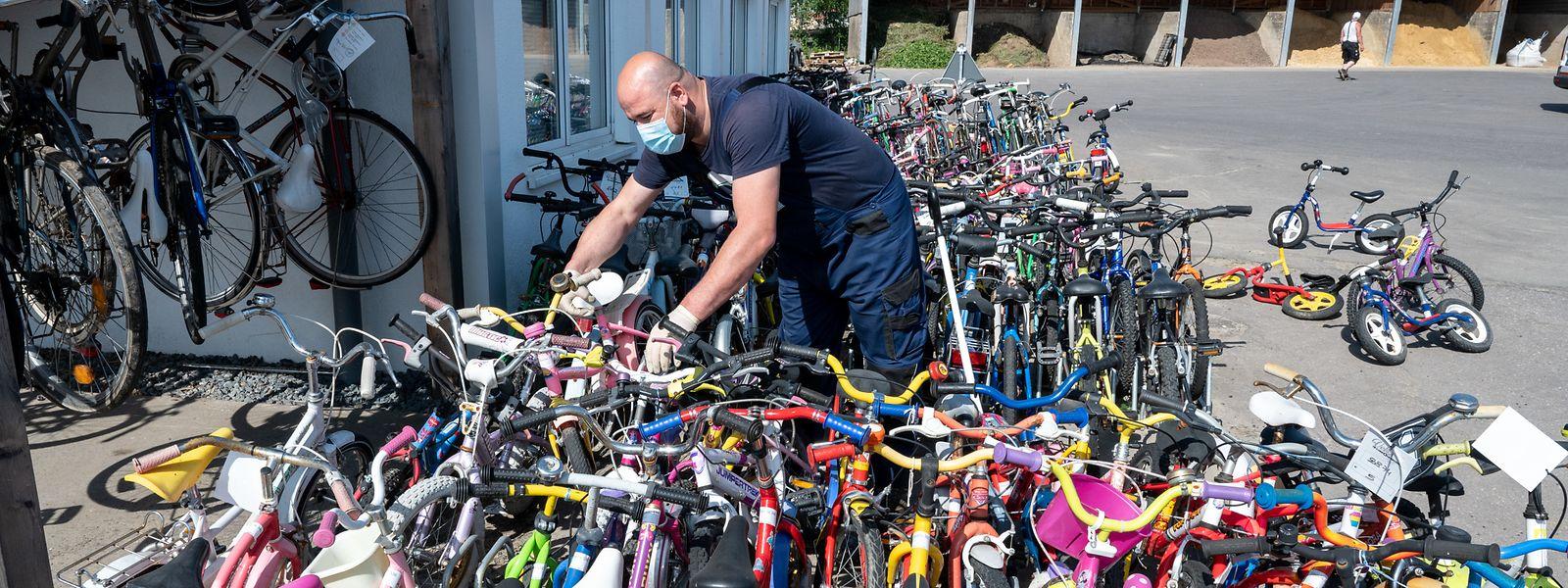 Gerade Kinderräder sind beliebt: Nach einem oder zwei Jahren können die Eltern zu einem größeren Exemplar wechseln.