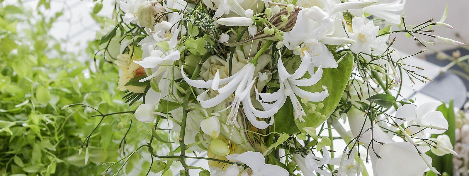 Kräuter wie Oregano und Thymian werden gern mit hübschen Blumen gemischt in Brautsträußen verwendet.