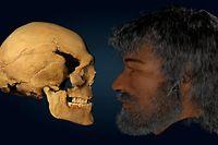 """Der """"Mann von Loschbour"""" war zwischen 34 und 47 Jahre alt, als er starb. Das Bild zeigt ihn in fortgeschrittenem Alter."""