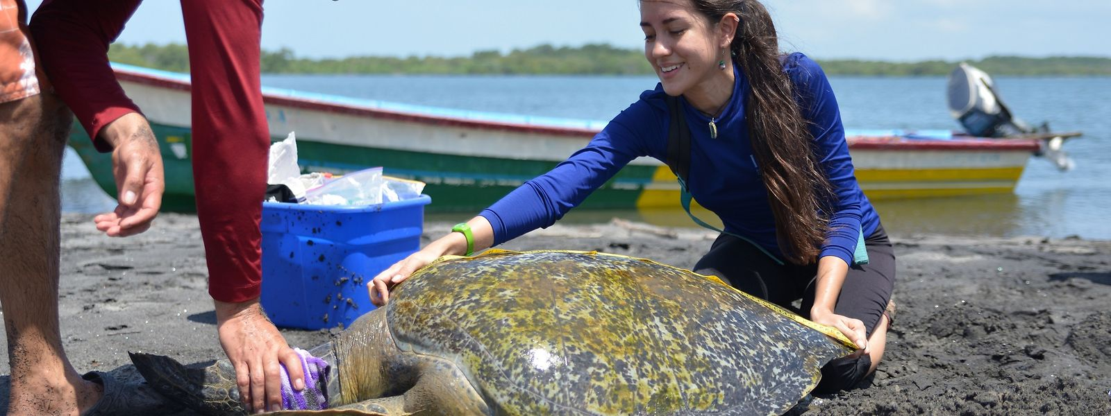 Melissa Valle und Aldo Sánchez untersuchen eine zuvor gefangene Schildkröte; Touristen können sie auf ihren Touren begleiten.