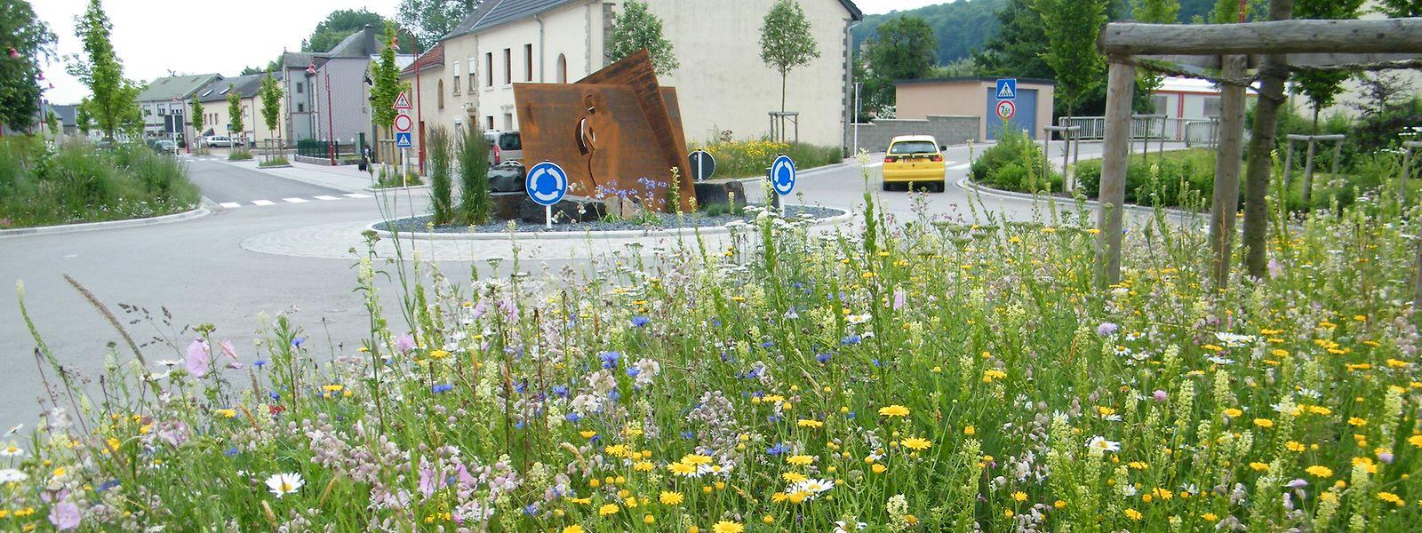 Die Gemeinde Mertzig gehört in Luxemburg zu den Vorreitern für naturnahe Grünanlagen.