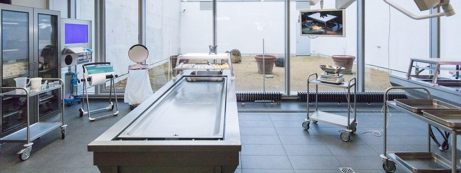 Der Autopsiesaal ist hermetisch abgeriegelt, bietet aber Sicht auf einen Innenhof.