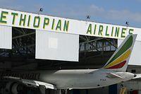 Die Maschine stürzte etwa 50 Kilometer südöstlich der Hauptstadt Addis Abeba ab.