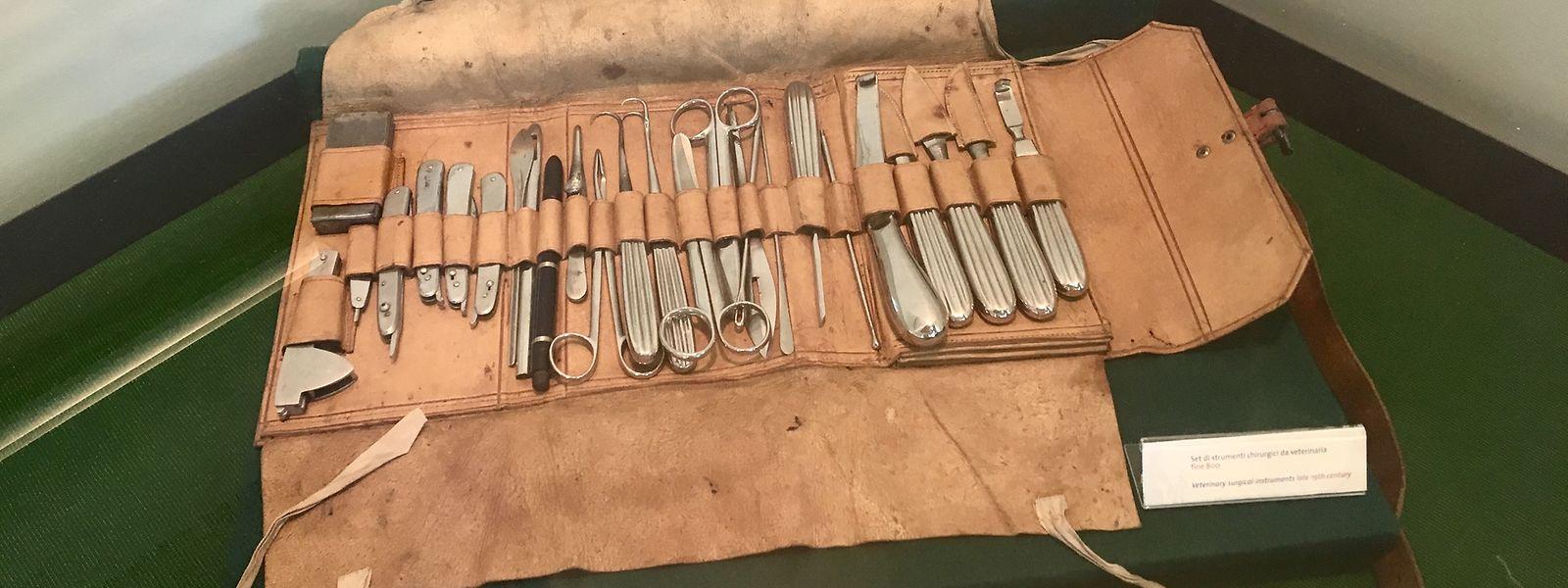 "Modernere medizinische Instrumente im ""Museo Papi""."
