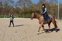 TC,Pferdesimulator. Reitstall Strassen. Foto: Gerry Huberty/Luxemburger Wort