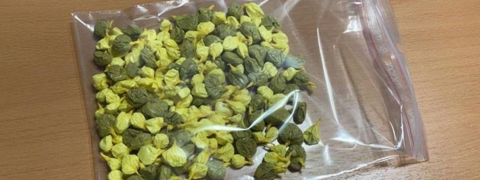 Kokain- und Heroinkugeln wurden am Mittwoch in einer Hecke im Petrustal gefunden.