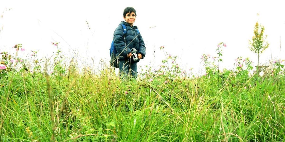 Der 7 Jahre alte Ali wohnt mit seiner Mutter in Redingen.
