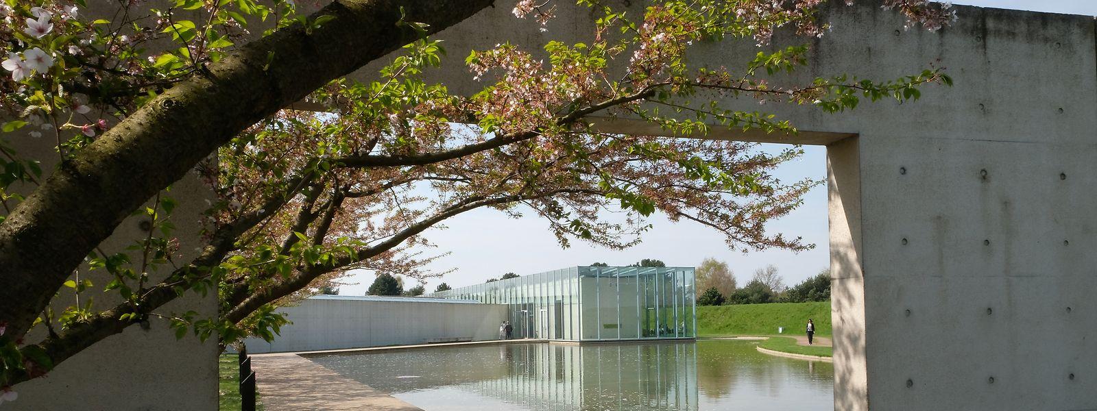 Die Langen Foundation in Neuss besticht durch ein eigenartiges Zusammenspiel von Beton, Glas, Stahl und Natur.