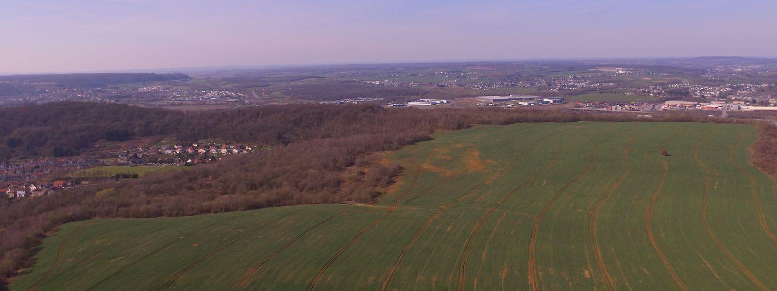 Le terrain de 116 hectares acquis par Differdange est aussi grand qu'un tiers de sa commune voisine, Saulnes.