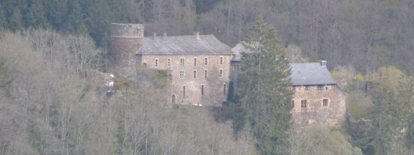 Von der gegenüberliegenden Talseite hat man den besten Blick auf die Burg.
