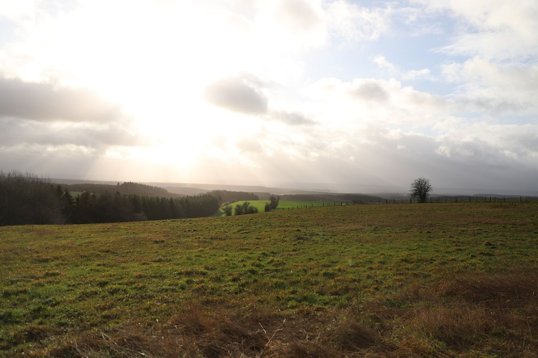 Em Grevels, o vento soprava forte mas o sol assomou por entre as nuvens