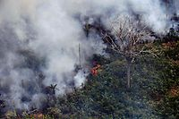 Aerial picture showing a fire in a piece of land in the Amazon rainforest, about 65 km from Porto Velho, in the state of Rondonia, in northern Brazil, on August 23, 2019. - Bolsonaro said Friday he is considering deploying the army to help combat fires raging in the Amazon rainforest, after news about the fires have sparked protests around the world. The latest official figures show 76,720 forest fires were recorded in Brazil so far this year -- the highest number for any year since 2013. More than half are in the Amazon. (Photo by CARL DE SOUZA / AFP)