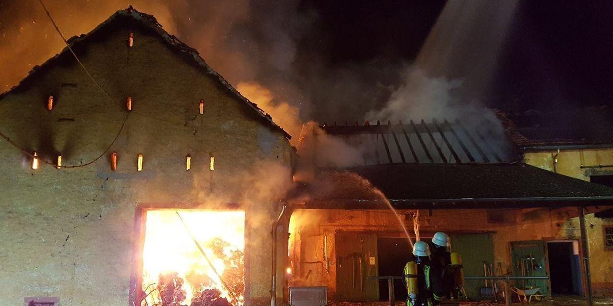 Rund 100 Feuerwehrleute käpften in Sievenich gegen die Flammen.