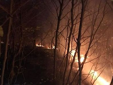 An area of forest near Bigelbach, east Luxembourg caught fire on Sunday