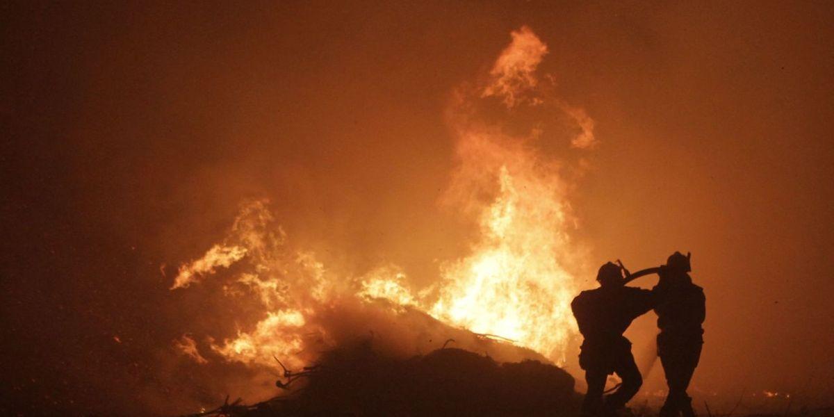 Die Feuerwehr kämpfte nördlich von Bastia gegen die Flammen, die von starkem Wind begünstigt wurden.