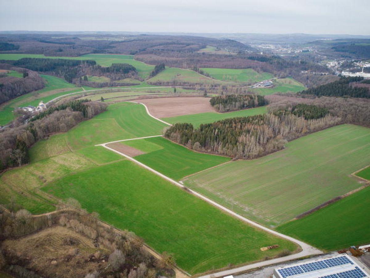 Der Internetkonzern Google will in Bissen ein Datenzentrum errichten. Das Projekt ist nicht zuletzt wegen der Umweltbelastung umstritten.